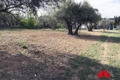 01-Venta-Parcela-2500-m-Caparacena-Ref-00500V185