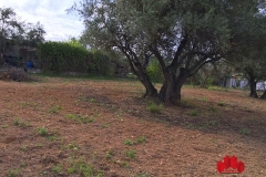 05-Venta-Parcela-2500-m-Caparacena-Ref-00500V185