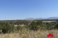 02-Venta-Parcela-Balcon-del-Cubillas-Ref.-P005000A